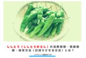 ししとう(ししとうがらし)の消費期限・賞味期限・保存方法(日持ちさせる方法)とは? アイキャッチ