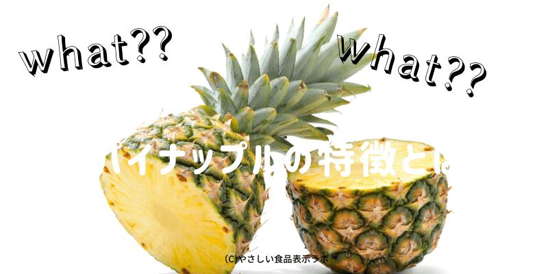 パイナップルの特徴とは??